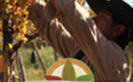 Imagen de Agricultura familiar en Conectate