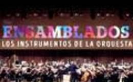 Imagen de Ensamblados. Los instrumentos de la orquesta en Conectate