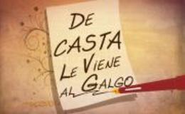 Imagen de De Casta le viene al galgo en Canal Extremadura
