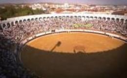 Imagen de Especial Feria taurina de San Miguel (Zafra) en Canal Extremadura