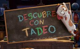 Imagen de Descubre con Tadeo en Mitele