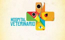 Imagen de Hospital Veterinario en Canal Once