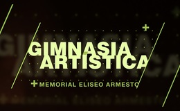 Imagen de GIMNASIA ARTíSTICA. MEMORIAL ELISEO ARMESTO