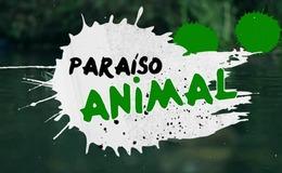 Imagen de Paraíso animal en RTPA (Asturias)