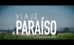 Imagen de VIAJE AL PARAíSO