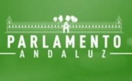 Imagen de Parlamento Andaluz en Canal Sur (Andalucía)