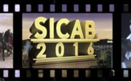 Imagen de SICAB 2016 en Castilla - La Mancha Media