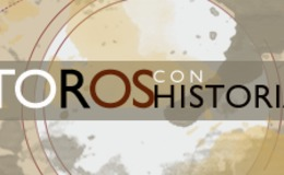 Imagen de Toros con Historia en Castilla - La Mancha Media