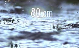 Imagen de 80 cm en RTVE