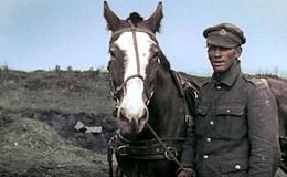 Imagen de Apocalipsis. La I Guerra Mundial en RTVE