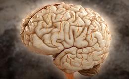 Imagen de Brain Games en RTVE