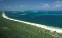 Imagen de El arrecife de coral en RTVE