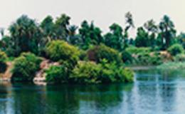 Imagen de El río de la vida en RTVE