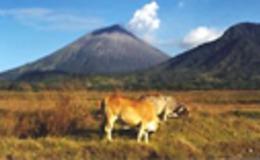 Imagen de Paraísos de Centroamérica en RTVE