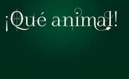 Imagen de Qué Animal en RTVE