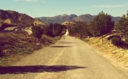 Imagen de Peregrinos