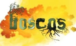 Imagen de Boscos en TV3 (Cataluña)