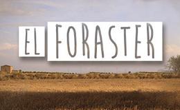 Imagen de El foraster en TV3 (Cataluña)