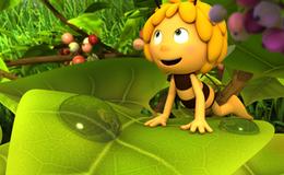 Imagen de L'abella Maia en TV3 (Cataluña)