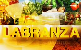 Imagen de Labranza en TVG (Galicia)