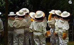 Imagen de Preescolar na casa en TVG (Galicia)
