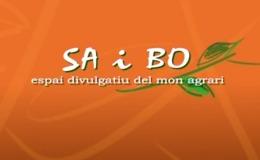 Imagen de Sa i bo en UPV TV