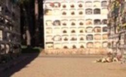 Imagen de La ciutat dels morts en xip/tv (Cataluña)