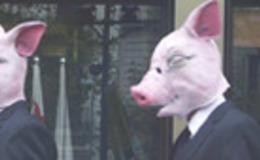 Imagen de La metamorfosis de la palomita en xip/tv (Cataluña)