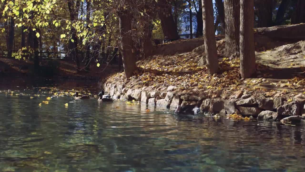 Capítol 21: La Vall d'Uixó, el Forcall, Llíria, Pego