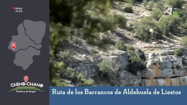 Ruta de los barrancos de Aldehuela de Liestos - 07/06/2020 16:08