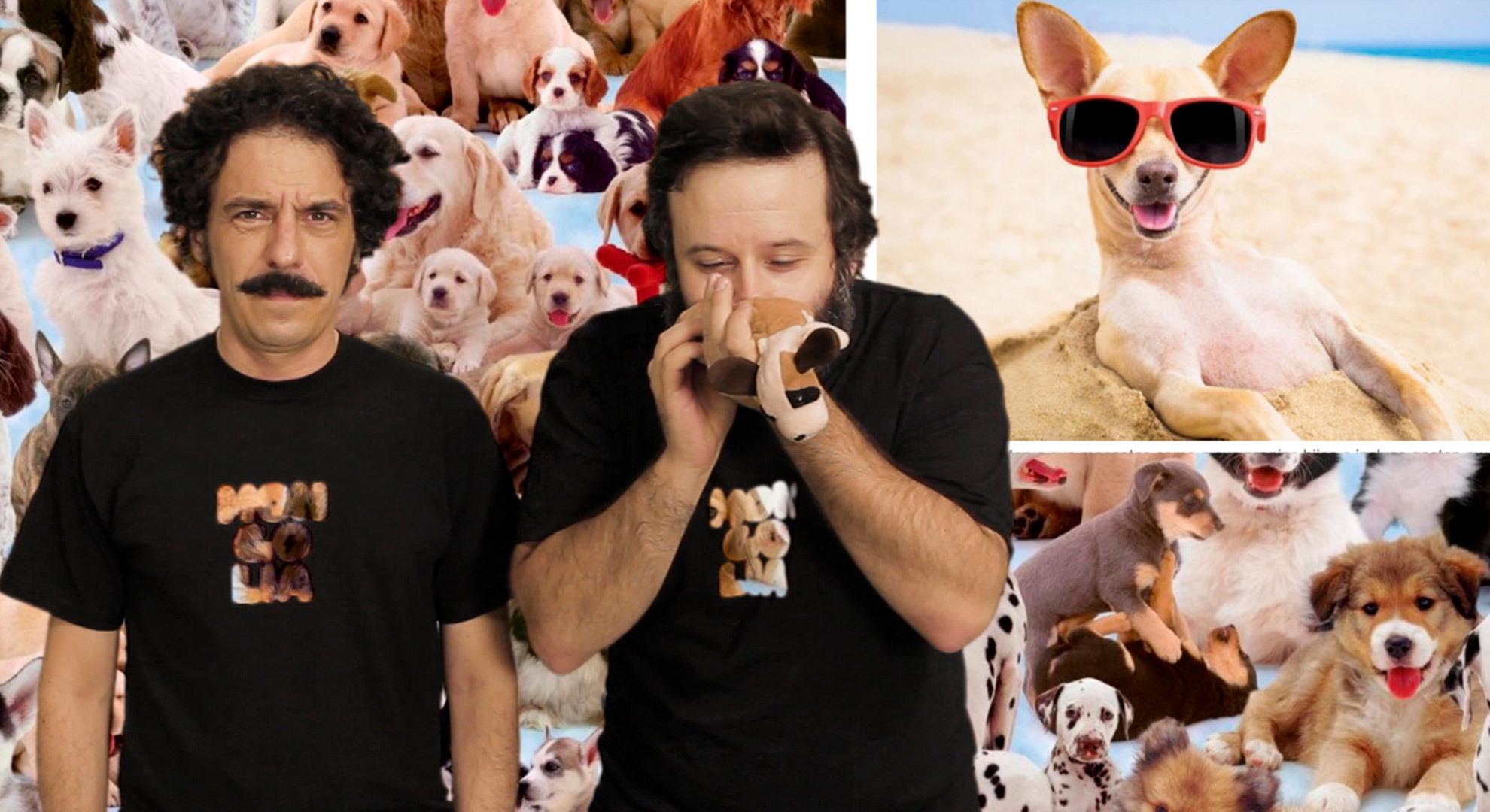 Temporada 1 ¿Por qué es mucho mejor tener un perro que un hijo?
