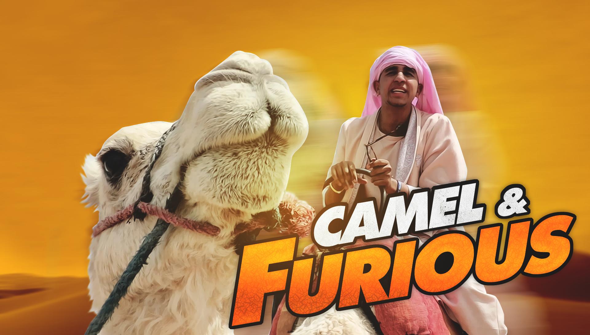 Temporada 2 Camel & Furious