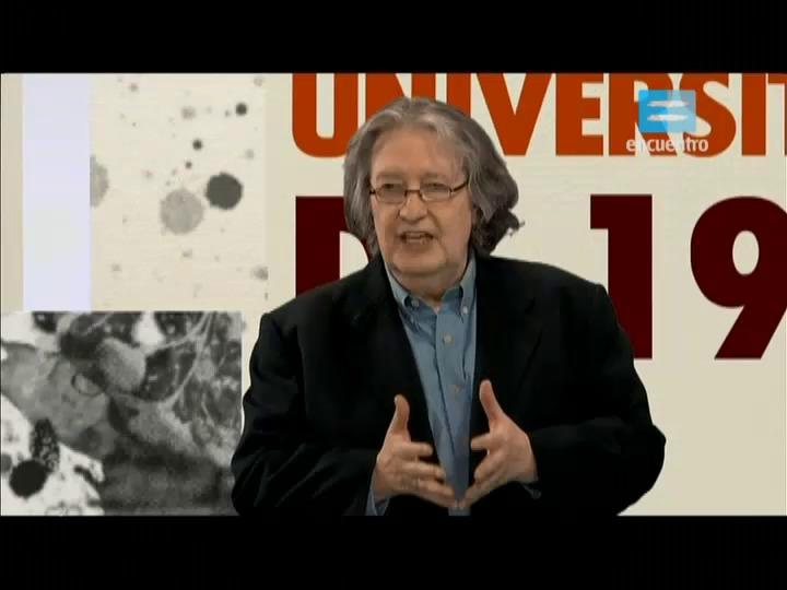 VII - 4 - La reforma universitaria