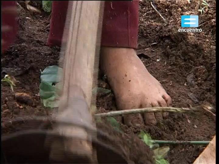 24 - Región Nordeste: Nuevos colonos - El Dorado