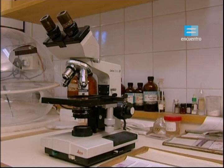 16 - El microscopio: un modo de conocer
