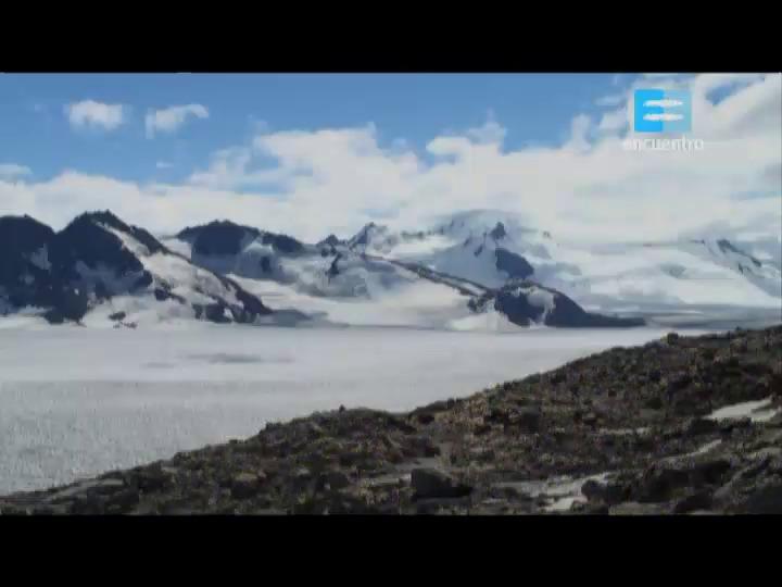 II - 1 - Bosques patagónicos