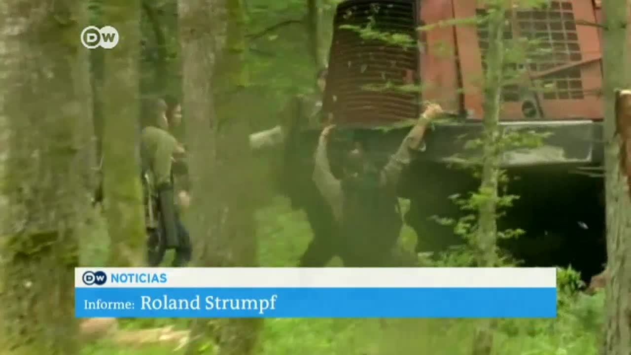 Activistas defienden bosque polaco