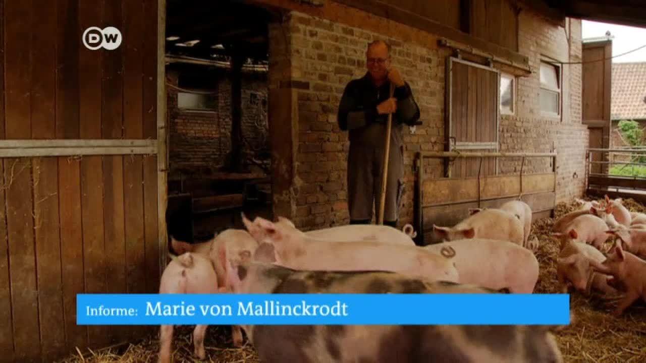 Agricultura sustentable versus grandes explotaciones en Alemania