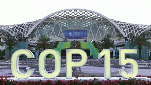 Arranca cumbre de biodiversidad en China