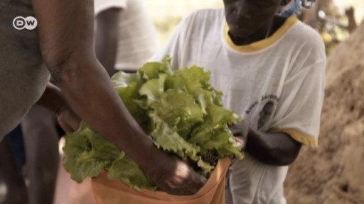 Burkina Faso intenta implantar agricultura ecológica