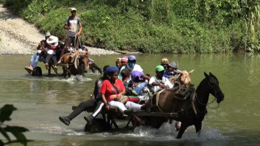 Ola de refugiados haitianos: