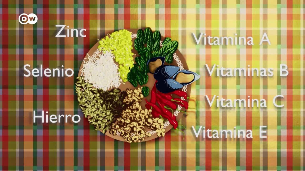 ¿De qué se compone nuestra comida?
