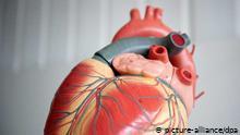 Tetralogía de Fallot - una cardiopatía congénita