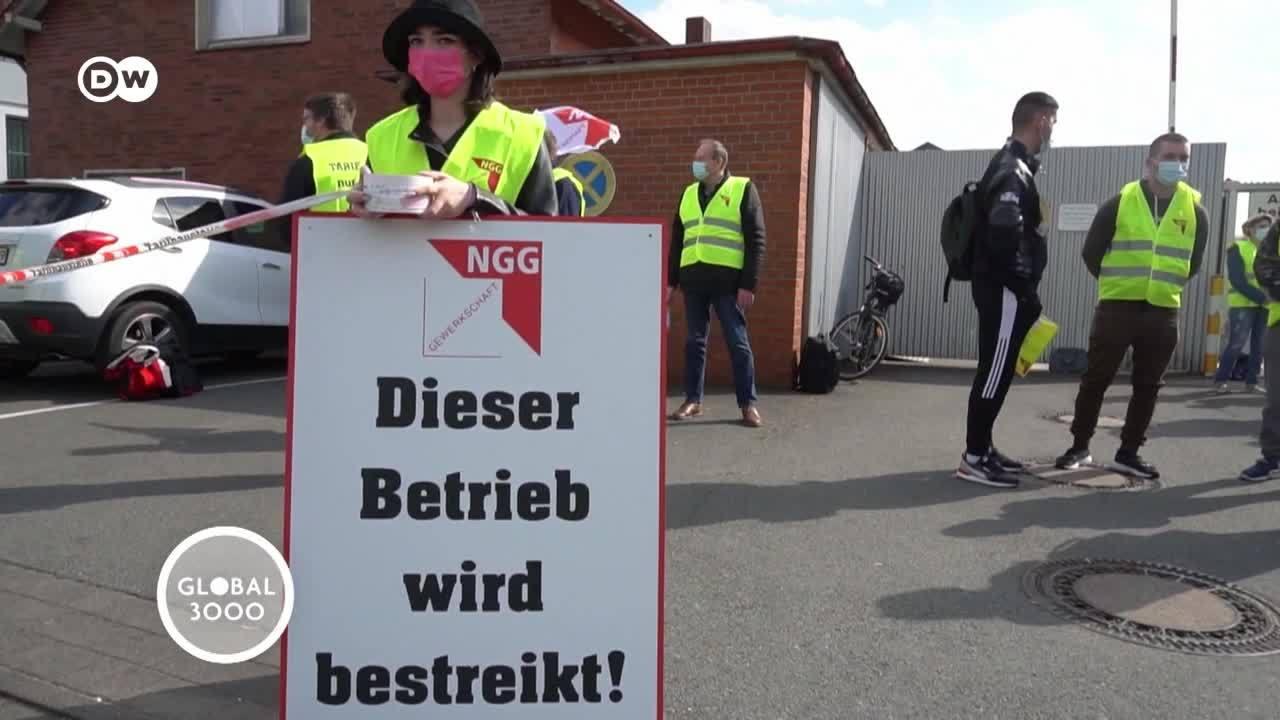 Alemania: conflicto laboral en la industria cárnica