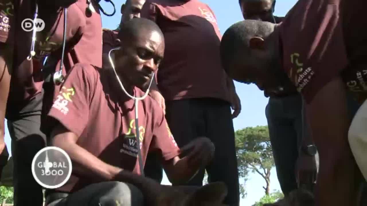 Malawi: más veterinarios para zonas rurales