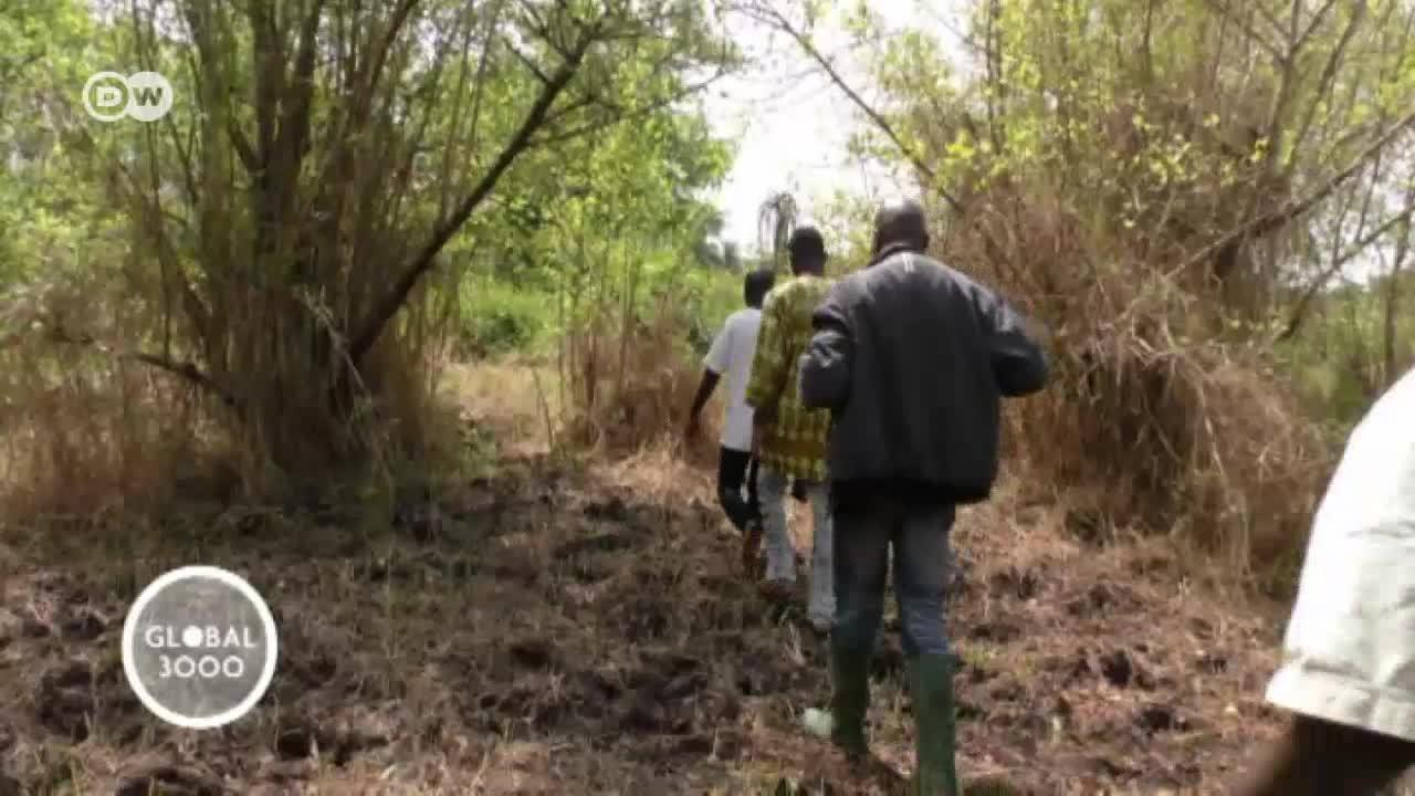 Togo: salvar a los hipopótamos