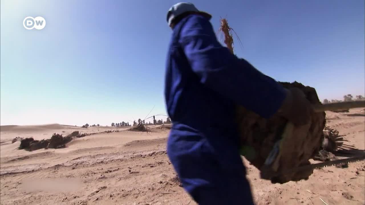 ¿Marruecos sin oasis? - Cambio climático en el desierto