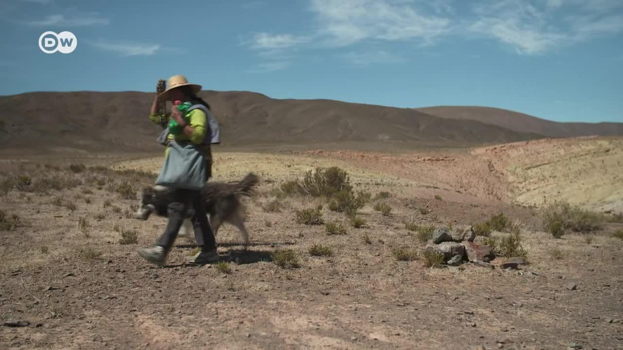 Los Andes - El legado del pueblo kolla
