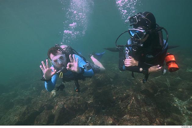 Dubái bajo el agua: arrecifes de coral y naufragios históricos