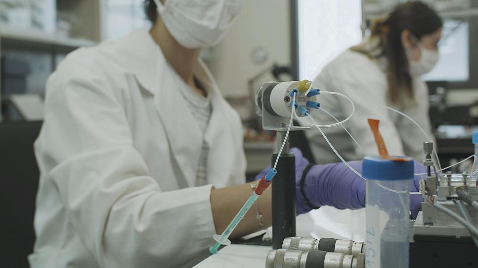 CONVAT, un biosensor para detectar coronavirus en humanos y murciélagos